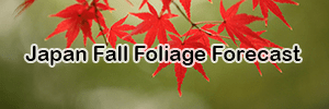 2021 Japan Fall Foliage Forecast