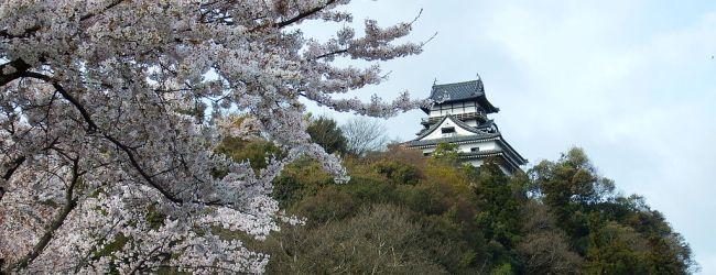 3-Day Nagoya Spring Itinerary