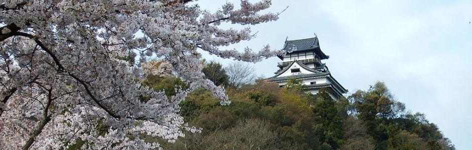 3-Day in Nagoya Spring Itinerary
