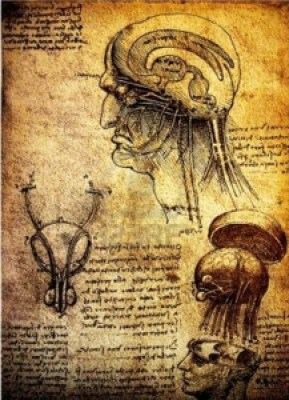 14376168-ancient-anatomical-drawings-made-by-leonardo-davinci-a-study-of-the-human-brain-and-nervous-system-750x1016