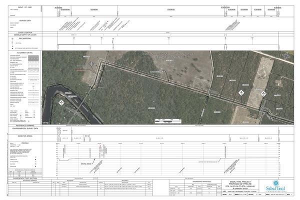 1657-PL-DG-70197-271, STA. 14157+00 TO STA. 14208+00, 14195+05 CL 24TH STREET, (SUWANNEE RIVER), SUWANNEE RIVER HDD - 1657-PL-DG-45109, HAMILTON & SUWANNEE COUNTIES, FLORIDA