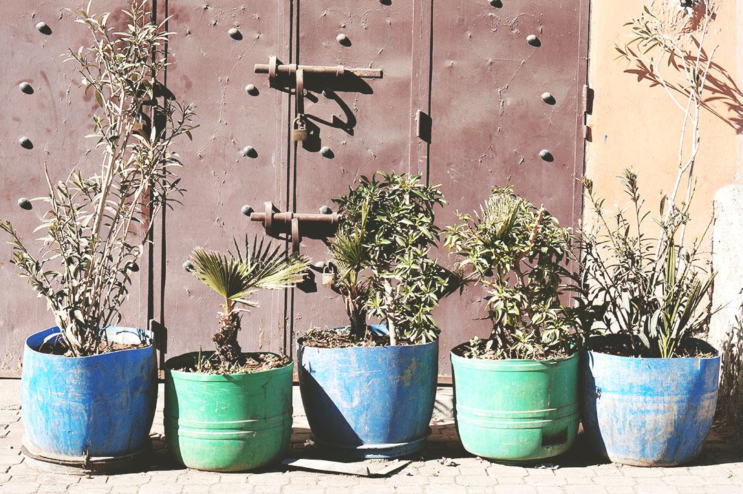 16_24h_marrakech_que_faire_souk