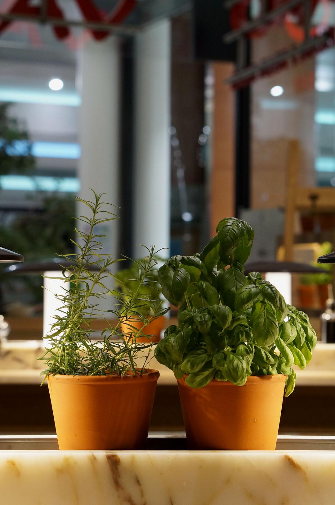 7_avis_restaurant_vapiano_nantes_atlantis