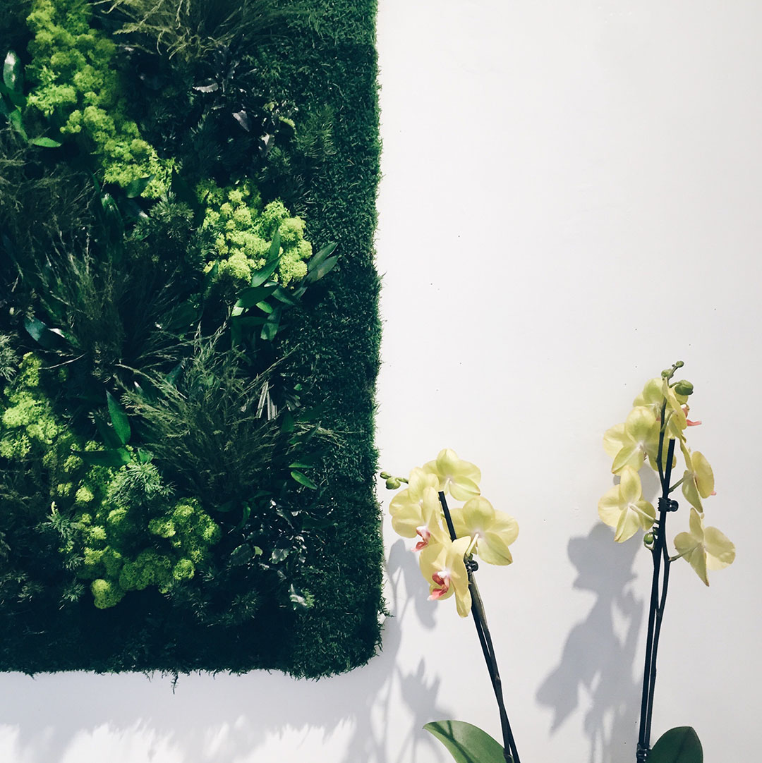 5_jardinerie_jane_nantes