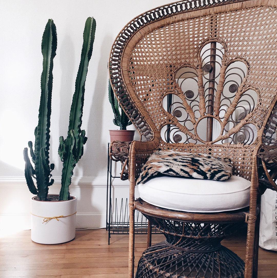 3_deco-cactus-geant-nantes-fauteuil-emmanuelle