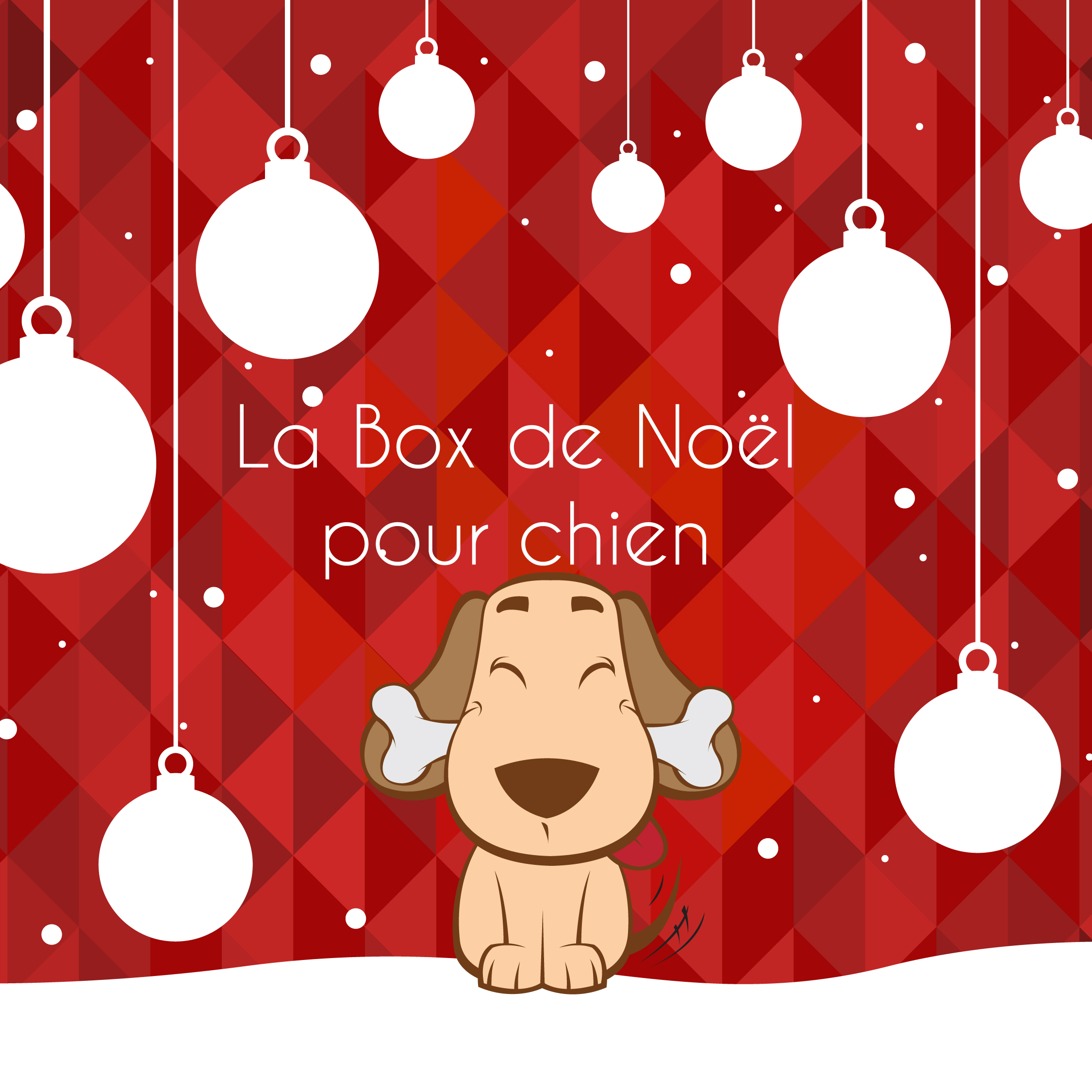 la box de no l pour chien 2016 la box naturelle. Black Bedroom Furniture Sets. Home Design Ideas