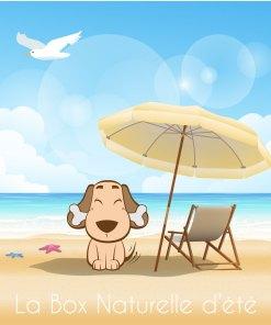 La Box Naturelle d'été pour chien