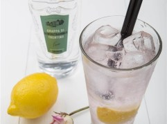 Holly Gin & Tonic