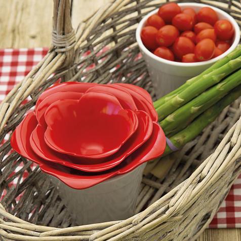 Set de 4 bols et pots Rose rouge Zak Designs