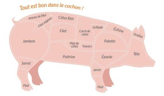 """cochon 2 300x176 - Notre Porc Blanc de l'Ouest dit """"Porc Celte"""" élevé en plein-air"""