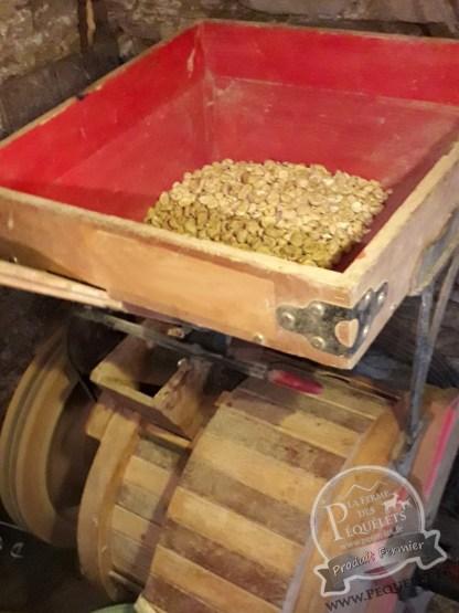 Moulin à grain DDD Président T5