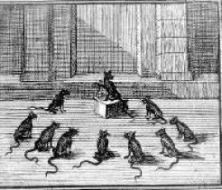 Conseil tenu par les rats (ill. F. Chauveau)