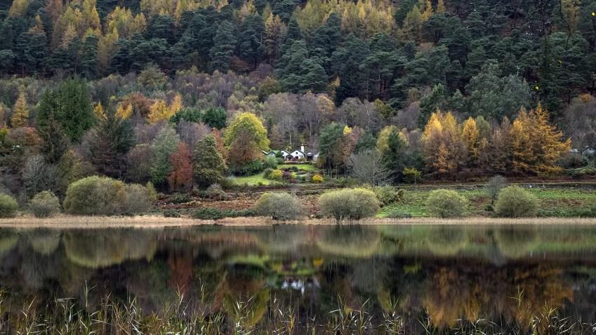 Glendalough Lower Lake Wicklow Mountains arbres lac