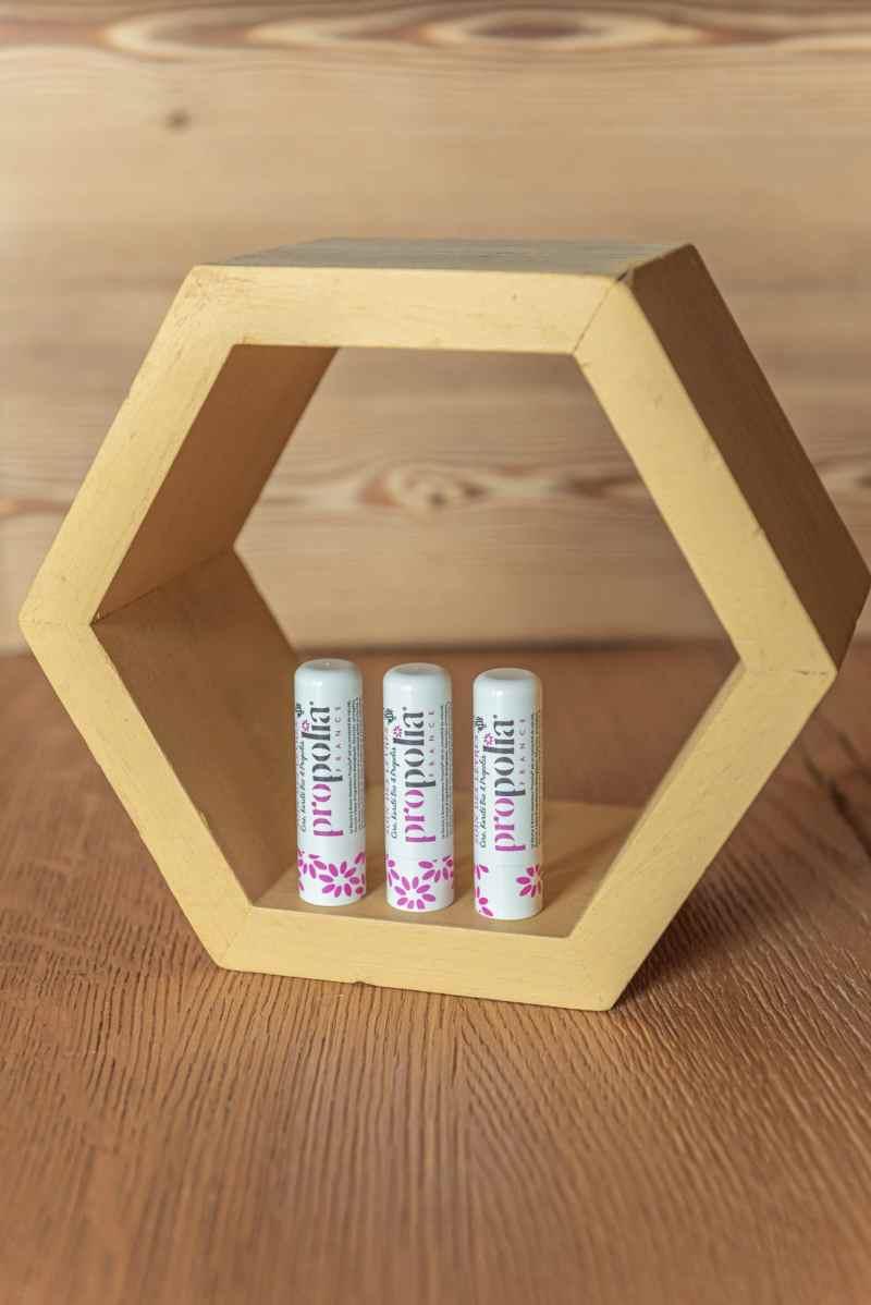 Baume à lèvres au propolis (cire et de miel artisanal)