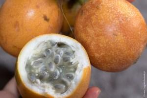 végétarien-passionfruit