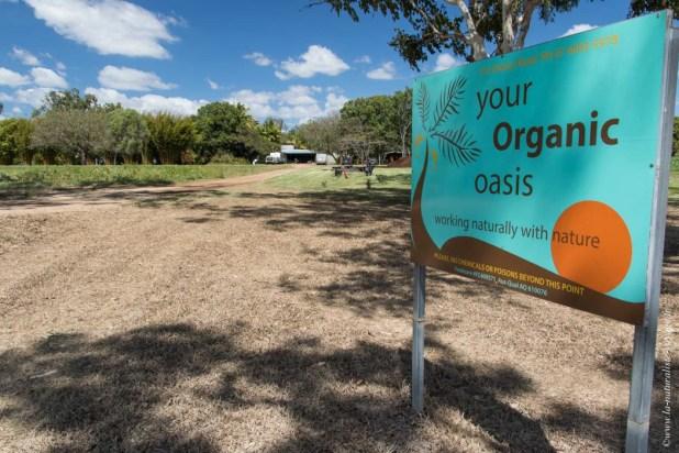 travail ferme australie Dimbulah organic