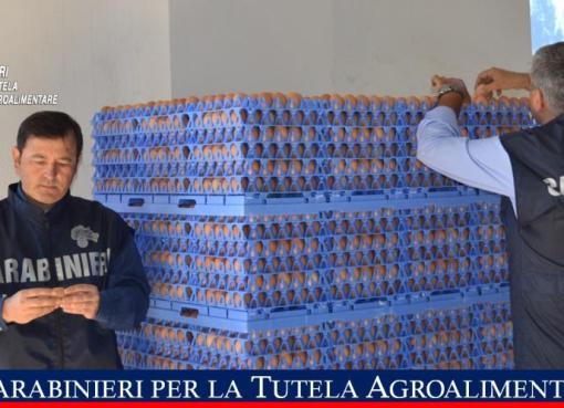 """< img src=""""https://www.la-notizia.net/alimentare"""" alt=""""alimentare"""""""