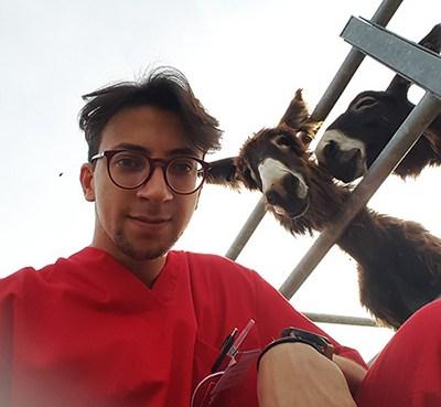 "< img src=""https://www.la-notizia.net/veterinaria"" alt=""veterinaria"""