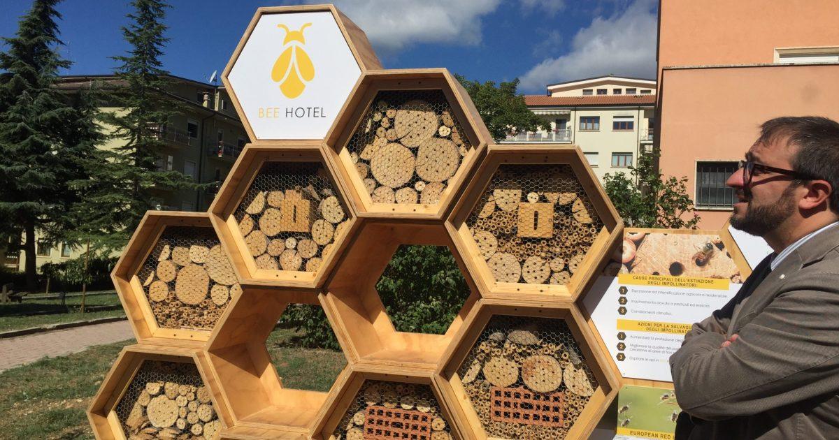 oasi delle api