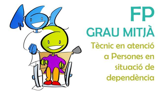 FORMACIÓ PROFESSIONAL DE GRAU MITJÀ