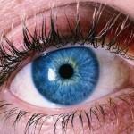L'iridologie votre santé en un regard par Ali Kurt du blog www.la-reflexologie-le-bien-etre.com