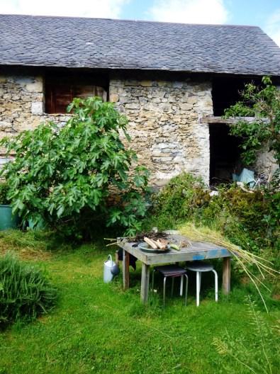 La-Renouee-des-Sens_201607_jardin_01