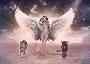 Angel C18, copyright Alexandre DeVries