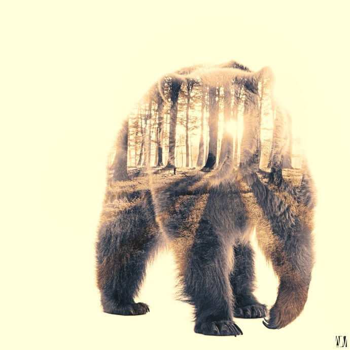 Bear, double exposition Nature. Crédit Photo Alexandre De Vries, La retouche photo