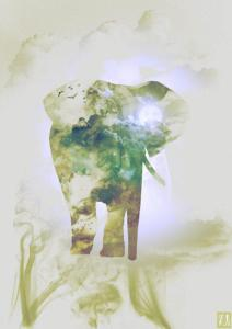 Elephant_Smoky nature-01