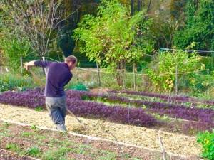 Permaculture Rhône