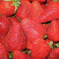 fraise épicerie fine bio et locale