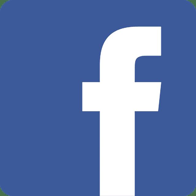 La Voix du Luthier Facebook