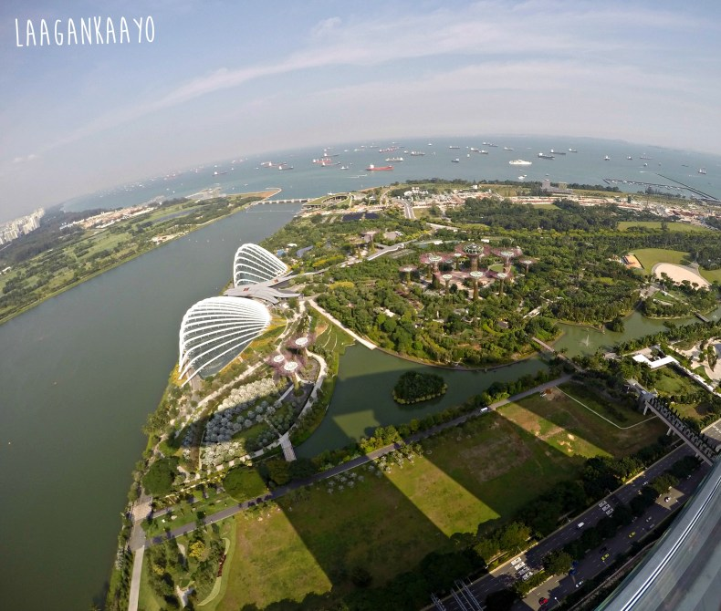 Gardens By The Bay View from Sands SkyPark Observation Deck, Marina Bay Sands Singapore