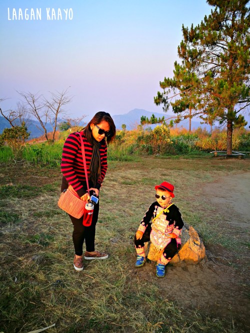 Day Trip to Phu Chi Fa in Chiang Rai, Thailand