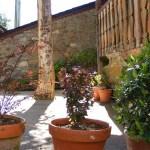 Terraza con plantas a la entrada