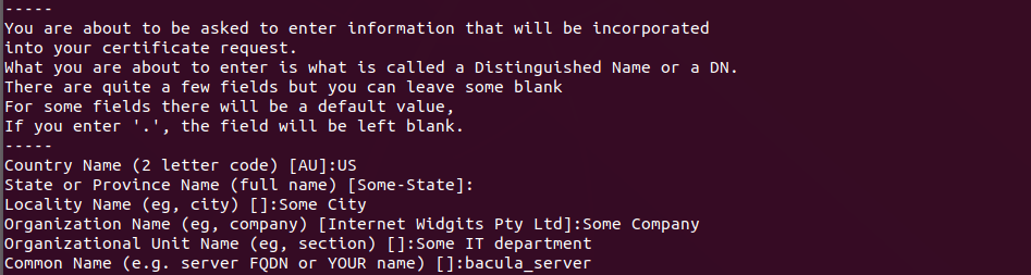 Generate keys in OpenSSL using configuration file - Lab
