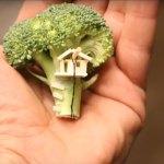 Ein Brokkoli-Baumhaus