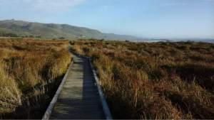 The Kortum Trail