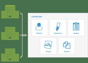 Multi Site Data Integration Solutions
