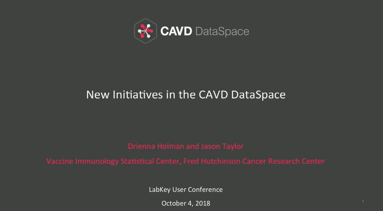 New Initiatives in the CAVD DataSpace