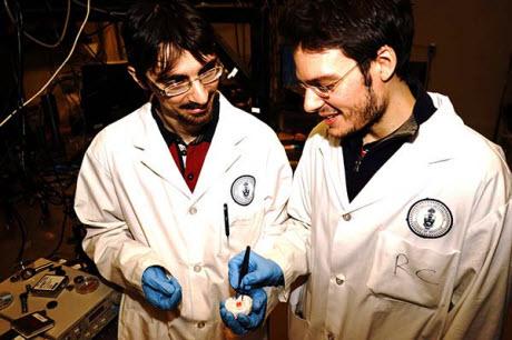 Valerio Adinolfi and Riccardo Comin