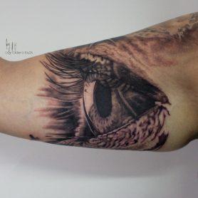 Eye - 2016