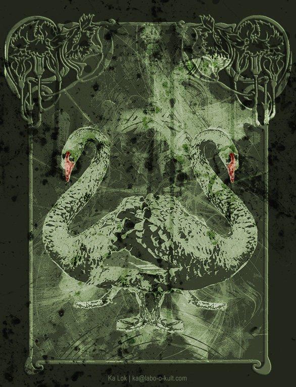 """Black Swans"" – GraphiKArt by Ka L-O-K"