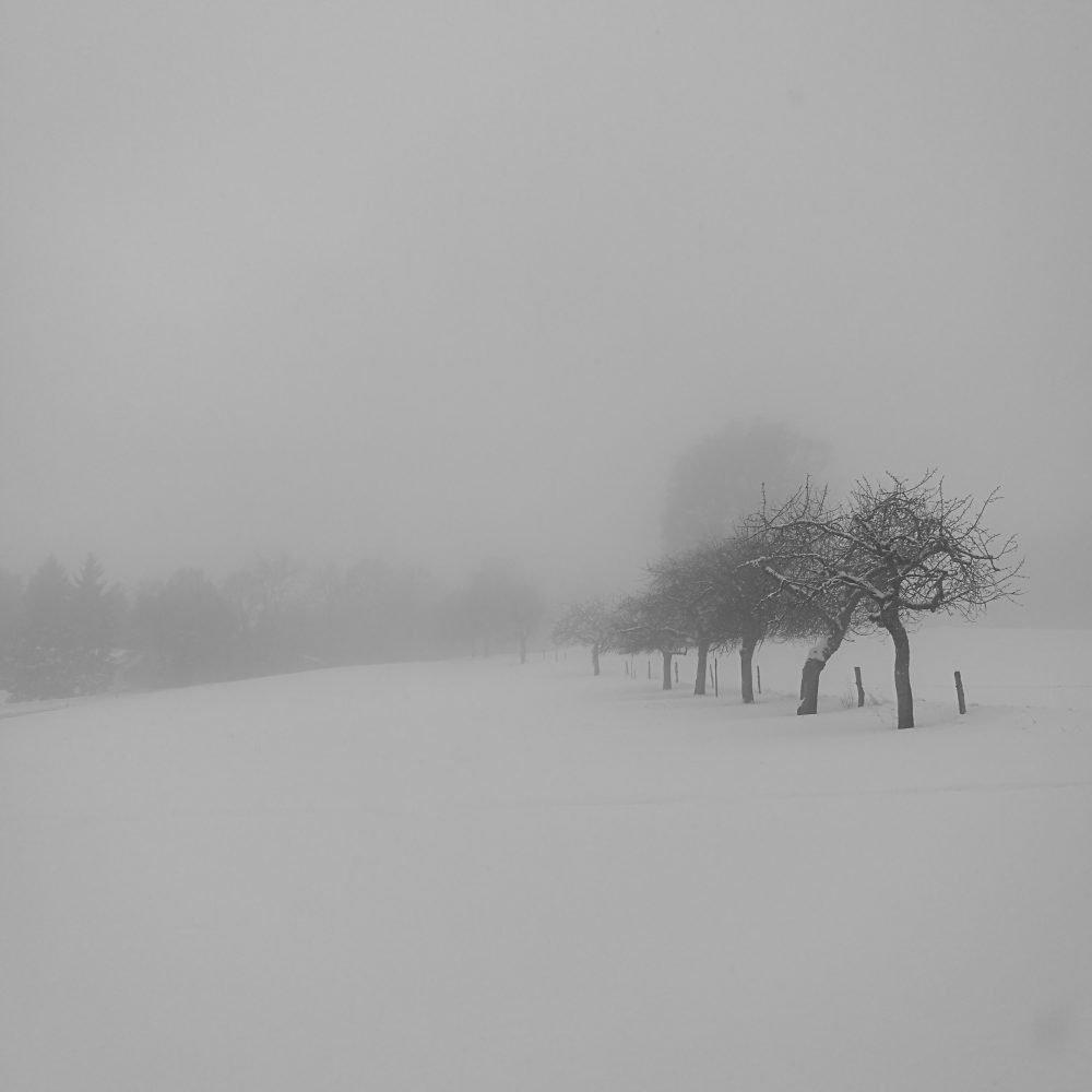 Foggy Landscape by Ka L-O-K