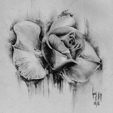 "Charcoal Drawing ""Rose"""
