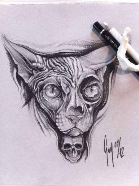 "Pencil Drawing ""Sphinx Cat"" Guy Labo-O-Kult"