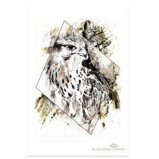 """HelvEdition Artwork by Ka L-O-K """"Falco"""""""