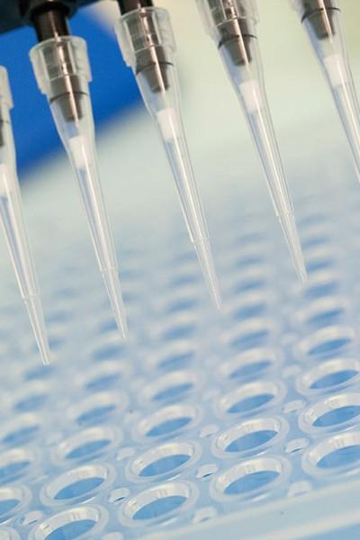 Pipetage pour PCR