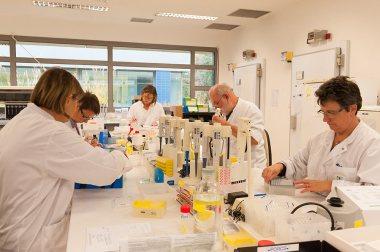 Préparation des plaques pour analyses immunologiques