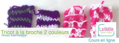 tricot-a-la-broche-2-couleurs-niveau-intermediaire